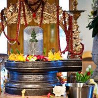 Vedic Birthday Celebration